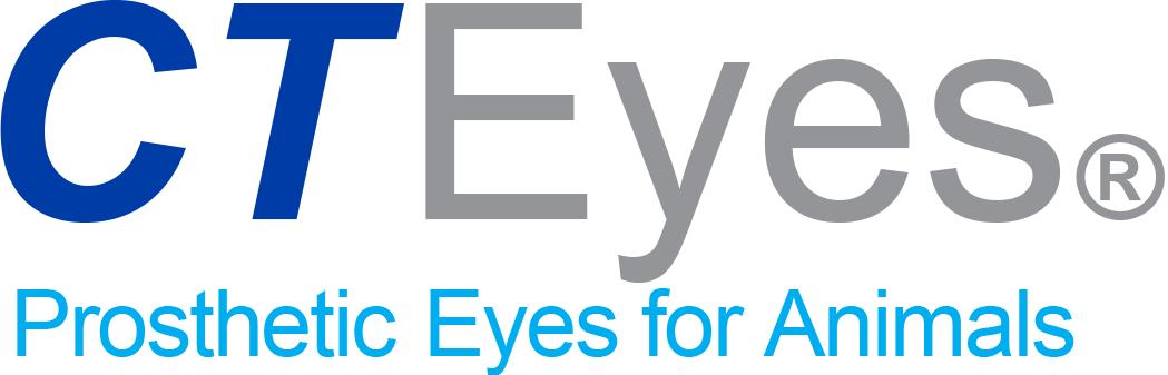 CTEyes Logo