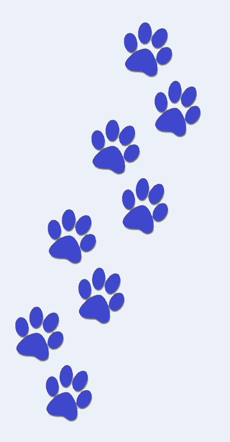 Dog paws - Blue - Blue Background