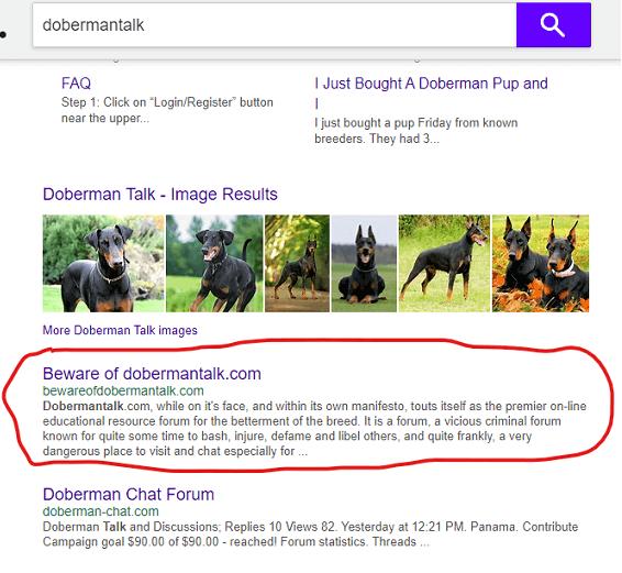 dobermantalk.com search results screenshot